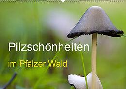 Cover: https://exlibris.azureedge.net/covers/9783/6714/3566/1/9783671435661xl.jpg