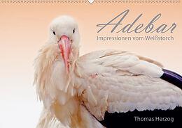 Cover: https://exlibris.azureedge.net/covers/9783/6714/5848/6/9783671458486xl.jpg
