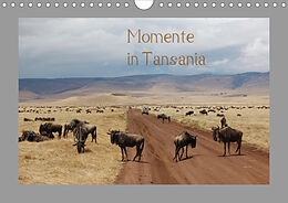 Cover: https://exlibris.azureedge.net/covers/9783/6714/5945/2/9783671459452xl.jpg