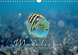 Cover: https://exlibris.azureedge.net/covers/9783/6715/0149/6/9783671501496xl.jpg