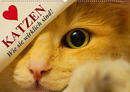 Cover: https://exlibris.azureedge.net/covers/9783/6716/1532/2/9783671615322xl.jpg