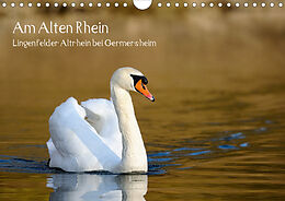 Cover: https://exlibris.azureedge.net/covers/9783/6717/4124/3/9783671741243xl.jpg