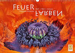 Cover: https://exlibris.azureedge.net/covers/9783/6717/7266/7/9783671772667xl.jpg