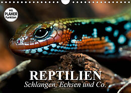 Cover: https://exlibris.azureedge.net/covers/9783/6718/7654/9/9783671876549xl.jpg