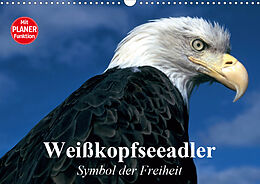 Cover: https://exlibris.azureedge.net/covers/9783/6719/0328/3/9783671903283xl.jpg
