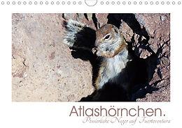 Cover: https://exlibris.azureedge.net/covers/9783/6719/2836/1/9783671928361xl.jpg