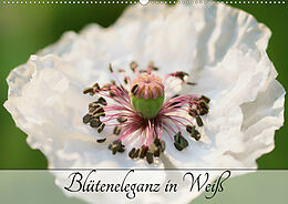 Cover: https://exlibris.azureedge.net/covers/9783/6719/4106/3/9783671941063xl.jpg