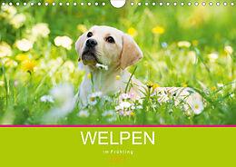 Cover: https://exlibris.azureedge.net/covers/9783/6719/9857/9/9783671998579xl.jpg