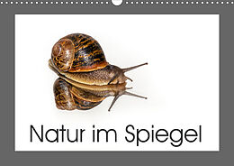 Cover: https://exlibris.azureedge.net/covers/9783/6720/0137/7/9783672001377xl.jpg