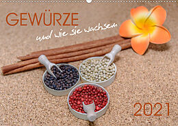 Cover: https://exlibris.azureedge.net/covers/9783/6722/0366/5/9783672203665xl.jpg