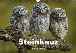 Cover: https://exlibris.azureedge.net/covers/9783/6722/3049/4/9783672230494xl.jpg