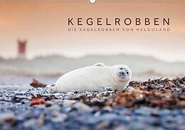 Cover: https://exlibris.azureedge.net/covers/9783/6723/0269/6/9783672302696xl.jpg