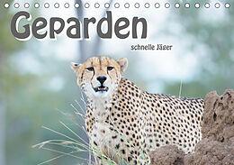 Cover: https://exlibris.azureedge.net/covers/9783/6723/2861/0/9783672328610xl.jpg