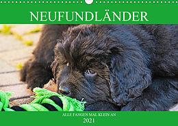 Cover: https://exlibris.azureedge.net/covers/9783/6723/5216/5/9783672352165xl.jpg