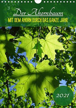 Cover: https://exlibris.azureedge.net/covers/9783/6724/0826/8/9783672408268xl.jpg