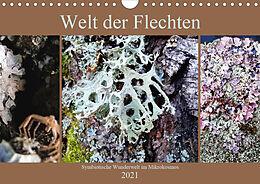 Cover: https://exlibris.azureedge.net/covers/9783/6724/8263/3/9783672482633xl.jpg