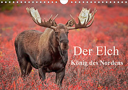 Cover: https://exlibris.azureedge.net/covers/9783/6724/8977/9/9783672489779xl.jpg