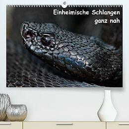 Cover: https://exlibris.azureedge.net/covers/9783/6725/0565/3/9783672505653xl.jpg