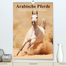 Cover: https://exlibris.azureedge.net/covers/9783/6725/3801/9/9783672538019xl.jpg