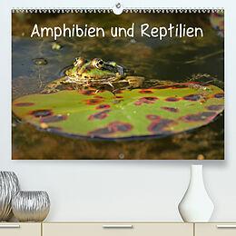 Cover: https://exlibris.azureedge.net/covers/9783/6725/5714/0/9783672557140xl.jpg