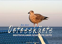 Cover: https://exlibris.azureedge.net/covers/9783/6728/2821/9/9783672828219xl.jpg