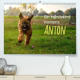 Kalender (Kal) Ein Hundekind namens Anton (Premium, hochwertiger DIN A2 Wandkalender 2022, Kunstdruck in Hochglanz) von Christiane Calmbacher