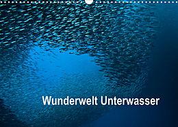 Kalender (Kal) Wunderwelt Unterwasser (Wandkalender 2022 DIN A3 quer) von Dieter Gödecke