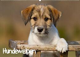 Kalender Hundewelpen (Wandkalender 2022 DIN A2 quer) von Anna Auerbach