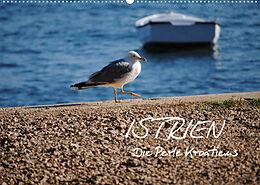 Cover: https://exlibris.azureedge.net/covers/9783/6729/1667/1/9783672916671xl.jpg