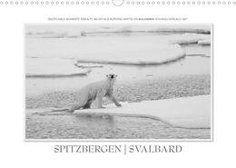 Cover: https://exlibris.azureedge.net/covers/9783/6729/1782/1/9783672917821xl.jpg