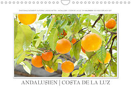 Cover: https://exlibris.azureedge.net/covers/9783/6729/1807/1/9783672918071xl.jpg