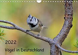 Kalender (Kal) Vögel in Deutschland (Wandkalender 2022 DIN A4 quer) von Karin Jähne