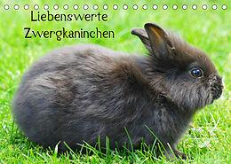 Kalender (Kal) Liebenswerte Zwergkaninchen (Tischkalender 2022 DIN A5 quer) von kattobello
