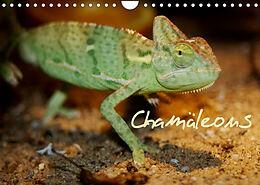 Kalender (Kal) Chamäleons (Wandkalender 2022 DIN A4 quer) von Chawera