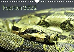 Kalender (Kal) Reptilien 2022 (Wandkalender 2022 DIN A4 quer) von lajavi.com