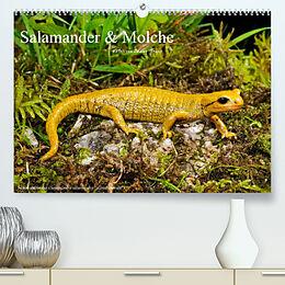 Kalender (Kal) Salamander und Molche (Premium, hochwertiger DIN A2 Wandkalender 2022, Kunstdruck in Hochglanz) von Benny Trapp