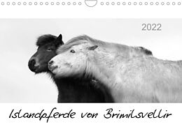 Kalender (Kal) Islandpferde von Brimilsvellir (Wandkalender 2022 DIN A4 quer) von Jutta Albert