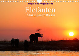 Kalender (Kal) Magie des Augenblicks - Elefanten - Afrikas sanfte Riesen (Wandkalender 2022 DIN A4 quer) von Winfried Wisniewski