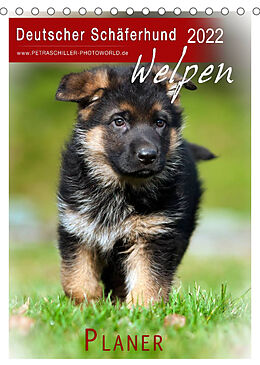 Kalender (Kal) Deutscher Schäferhund - Welpen, Planer (Tischkalender 2022 DIN A5 hoch) von Petra Schiller