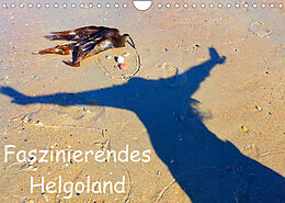 Cover: https://exlibris.azureedge.net/covers/9783/6731/1346/8/9783673113468xl.jpg