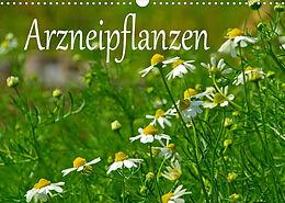 Cover: https://exlibris.azureedge.net/covers/9783/6731/2666/6/9783673126666xl.jpg