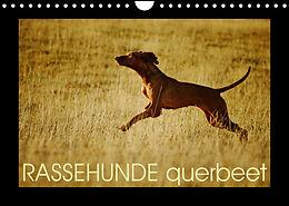 Kalender (Kal) RASSEHUNDE querbeet (Wandkalender 2022 DIN A4 quer) von Kathrin Köntopp