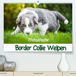 Kalender (Kal) Pfotastische Border Collie Welpen (Premium, hochwertiger DIN A2 Wandkalender 2022, Kunstdruck in Hochglanz) von Andrea Mayer