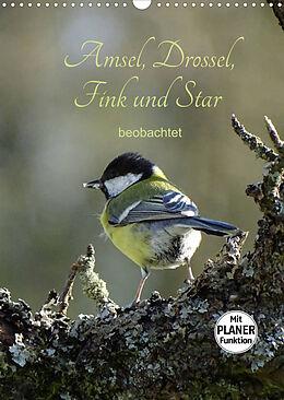 Kalender (Kal) Amsel, Drossel, Fink und Star - beobachtet (Wandkalender 2022 DIN A3 hoch) von Flori0