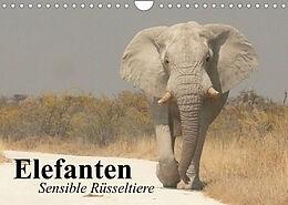 Kalender (Kal) Elefanten. Sensible Rüsseltiere (Wandkalender 2022 DIN A4 quer) von Elisabeth Stanzer