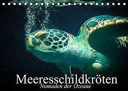Kalender (Kal) Meeresschildkröten. Nomaden der Ozeane (Tischkalender 2022 DIN A5 quer) von Elisabeth Stanzer
