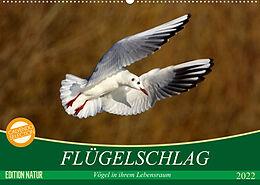 Kalender Flügelschlag - Vögel in ihrem natürlichen Lebensraum (Wandkalender 2022 DIN A2 quer) von Axel Kottal / Claudia Elsner