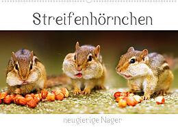 Kalender Streifenhörnchen - neugierige Nager (Wandkalender 2022 DIN A2 quer) von Stefan Mosert