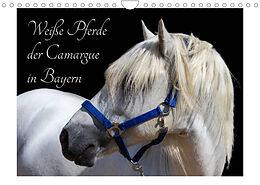 Kalender (Kal) Weiße Pferde der Camargue in Bayern (Wandkalender 2022 DIN A4 quer) von photography brigitte jaritz