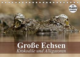 Kalender (Kal) Große Echsen. Krokodile und Alligatoren (Tischkalender 2022 DIN A5 quer) von Elisabeth Stanzer